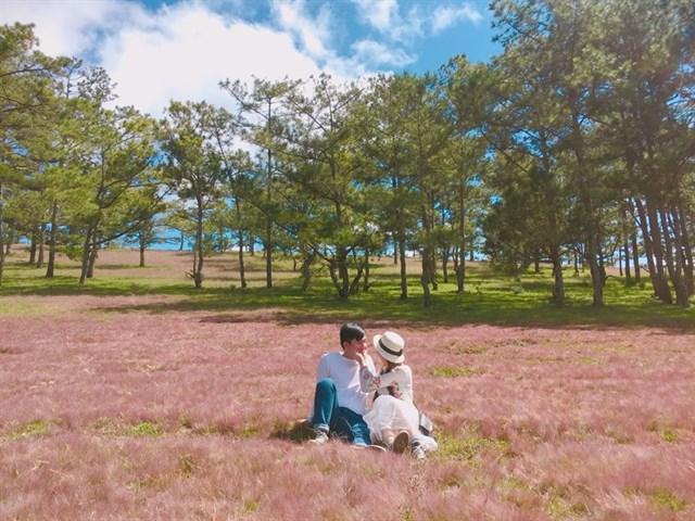 """Thu về đừng quên buổi hẹn với """"mùa cỏ hồng"""" Đà Lạt - 1"""
