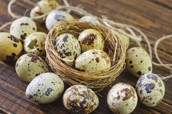 Ai ngờ trứng chim cút có tới 15 tác dụng chữa bệnh thần kỳ như thế này - 3