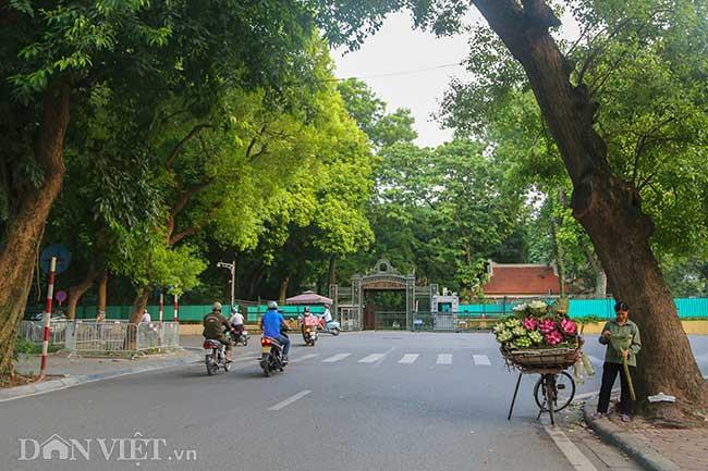 Ảnh: Những con phố siêu ngắn đi bộ chưa hết 1 phút ở Hà Nội - 2
