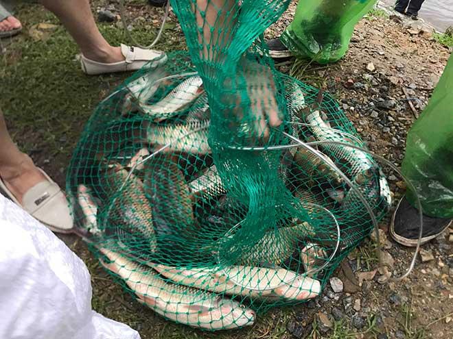 Người dân Hà Nội buông cần, giăng lưới bắt cá sau bão số 3 - 4