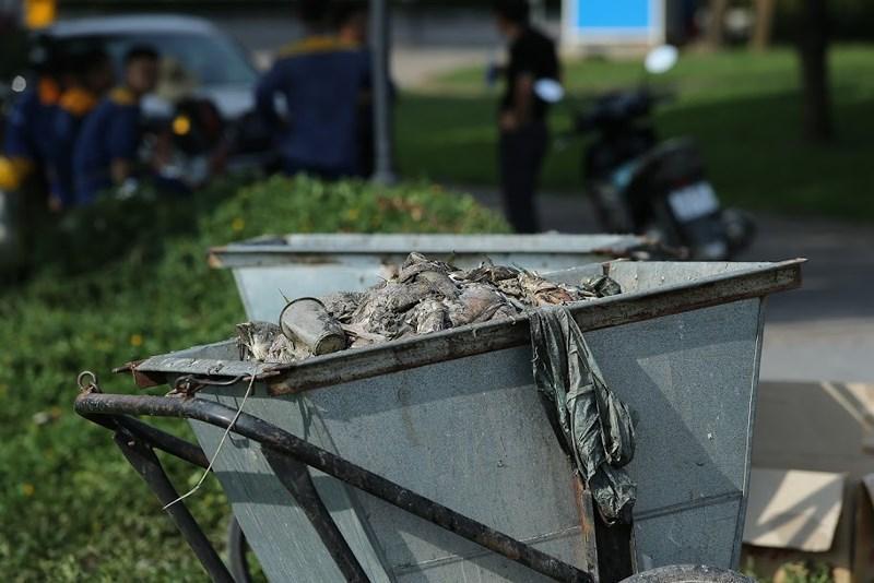 Cá chết đầy mặt hồ Yên Sở bốc mùi hôi thối, công nhân vệ sinh vớt cá suốt 2 ngày - 7