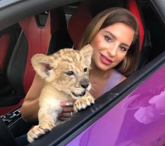 Gái trẻ khiến fan hú vía khi khoe ảnh chụp cùng sư tử trên