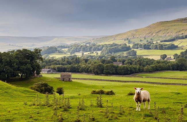 12 lý do bạn nên du lịch nước Anh một lần trong đời - 2