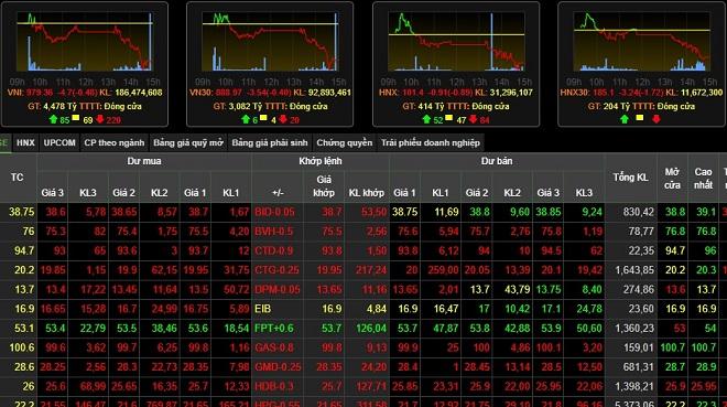 Cổ phiếu của Rạng Đông bất ngờ tăng kịch trần - 1