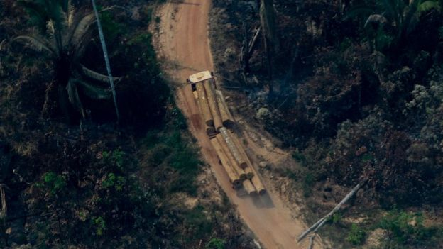 """Hoạt động vì rừng Amazon, bị """"hành quyết"""" trước mặt gia đình ở Amazon - 3"""