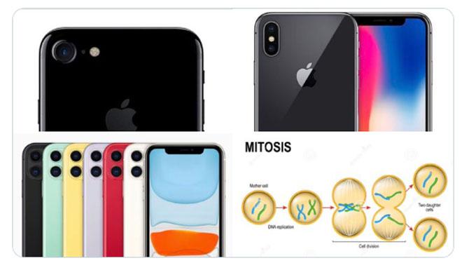 """iPhone 11 vẫn bị dân mạng """"đấm không trượt phát nào"""" - 9"""