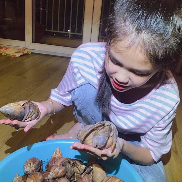 Loài ốc lạ chỉ để làm cảnh, giá lên tới 2-3 triệu đồng người Việt vẫn đổ tiền mua - 2