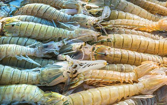 Top 10 đặc sản hải sản ngon nhất đất Việt được sách Kỷ lục ghi nhận - 19