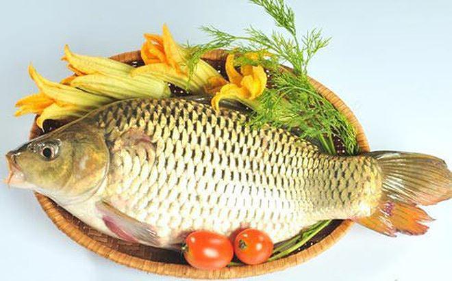 8 loại cá