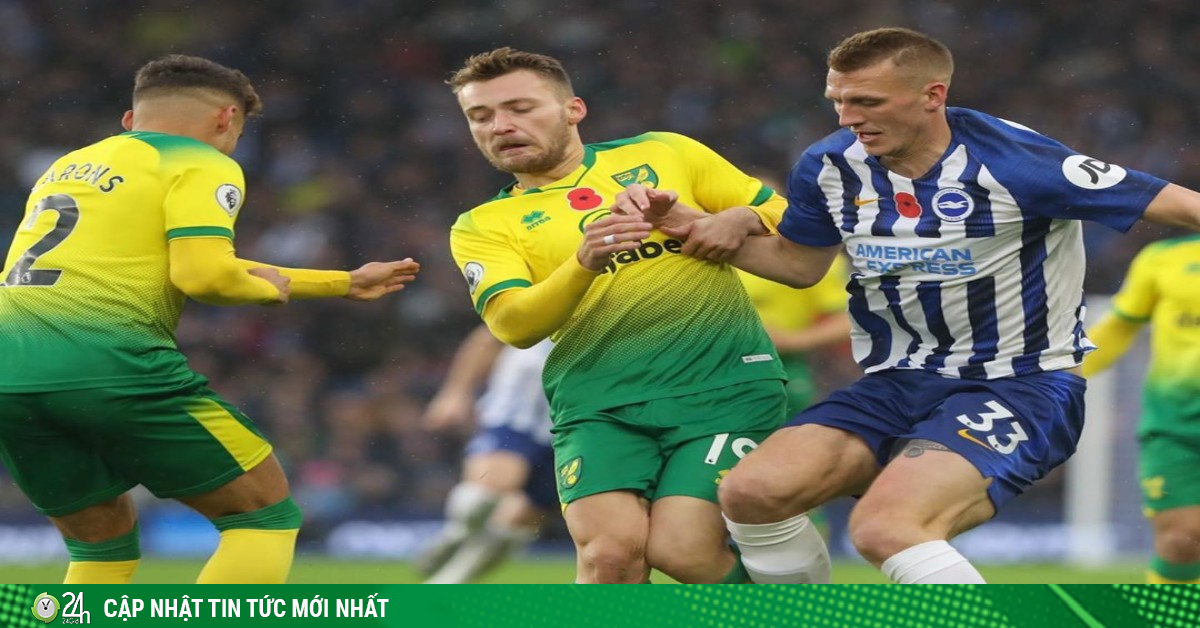 Trực tiếp bóng đá Norwich - Brighton: Tâm thế không còn gì để mất