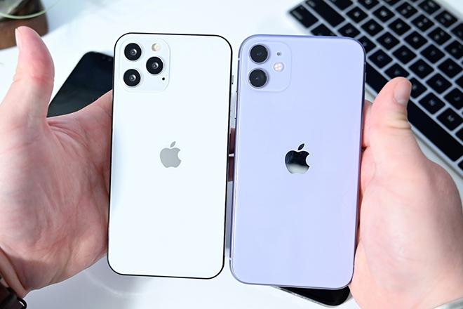 iPhone 12 trông ra sao trước iPhone 11 và iPhone SE? - 3