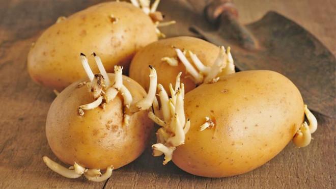 6 thực phẩm có nguy cơ ung thư cực cao nên càng tránh xa càng sống thọ - 2