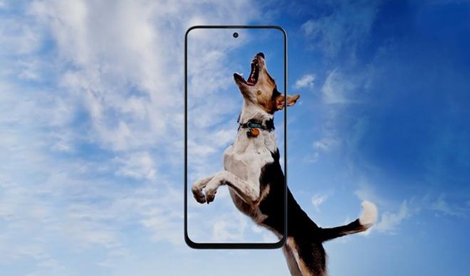 """Samsung """"trình làng"""" Galaxy M31s pin siêu lớn, giá phải chăng - 1"""