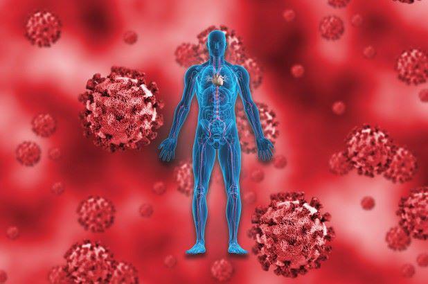 Truy tìm nguồn gốc SARS-COV-2 nhờ tái tạo lại lịch sử tiến hóa - 2