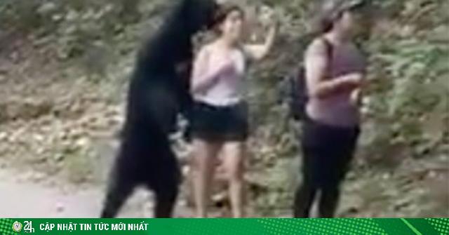 Sau khi chụp ảnh sefie cùng cô gái, gấu đen bị dọa thiến