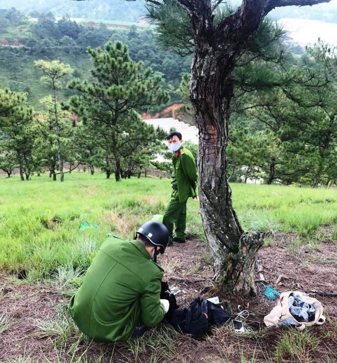 Phát hiện thi thể cô gái và thư tuyệt mệnh cạnh cây thông cô đơn - 1