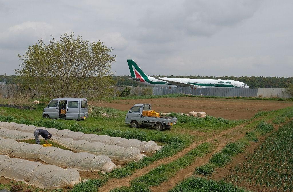 Lão nông từ chối 40 tỷ, trồng rau giữa sân bay lớn nhất Nhật Bản - 1