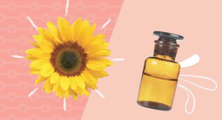 Những loại dầu dưỡng da đơn giản, dễ kiếm giúp làn da căng mọng - 1