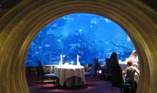 Trải nghiệm khách sạn dưới đáy biển độc nhất thế giới - 6