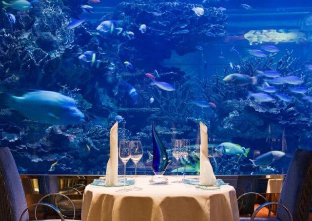 Trải nghiệm khách sạn dưới đáy biển độc nhất thế giới - 7