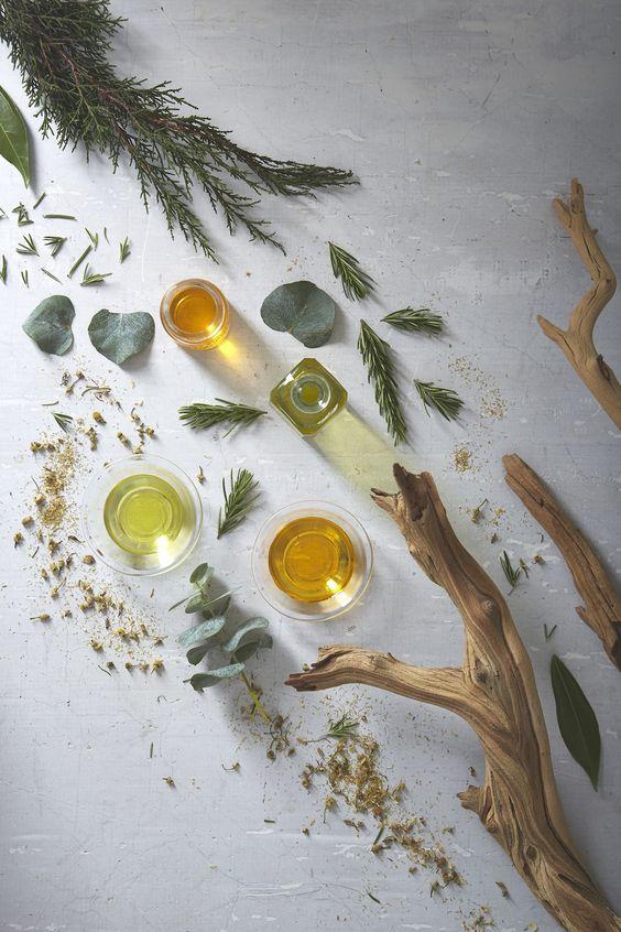 Top những loại dầu dưỡng da tuyệt vời nhất - 1