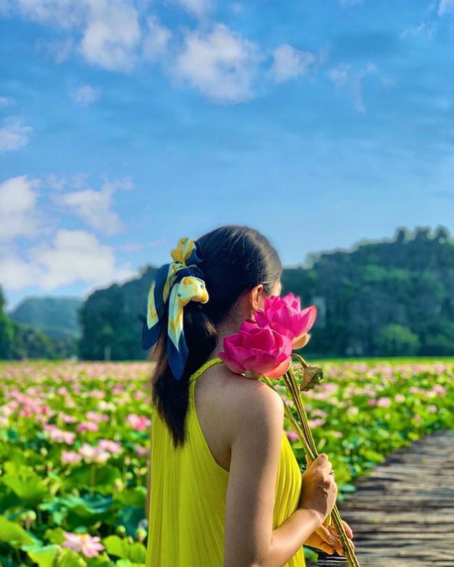 """Ngỡ ngàng hồ sen nở rộ giữa Thu ở Hang Múa (Ninh Bình), giới trẻ tha hồ chụp ảnh """"sống ảo"""" - 3"""