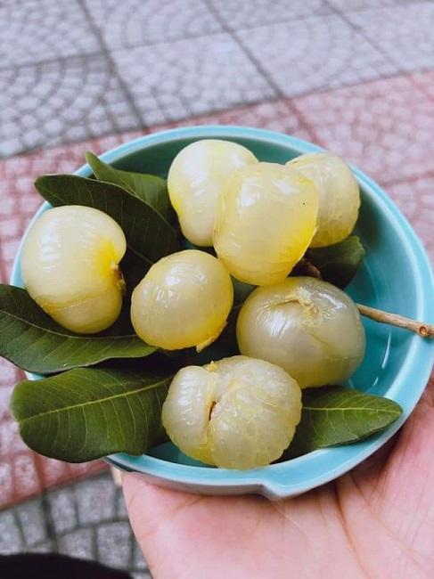 Loại nhãn lạ có cùi cuộn như bắp cải, giá cao gấp 5 lần nhãn thường vẫn được săn lùng - 3