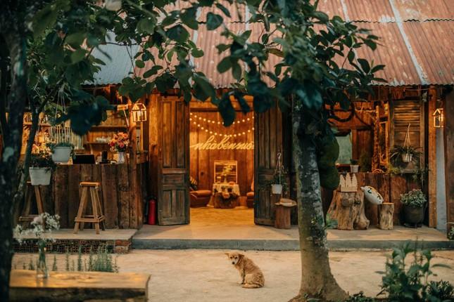 """Đà Lạt quá chill: """"Đổi cảnh"""" ở hai tiệm cà phê có view thiên nhiên đẹp đến nao lòng - 1"""