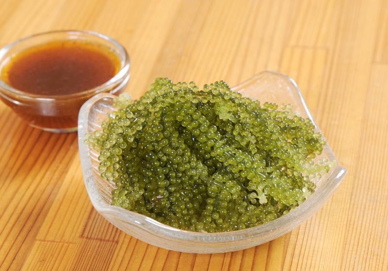 """Loại tảo này người Việt ít ai để ý nhưng được ví như """"tảo trường thọ"""" - 6"""