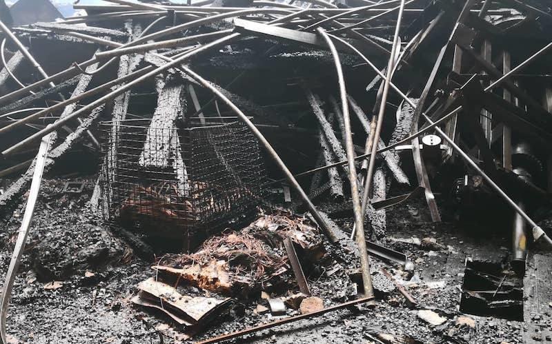 Quang Hà ám ảnh vụ cháy liveshow thiệt hại 30 tỷ, Hoài Linh thừa nhận không muốn diễn - 4