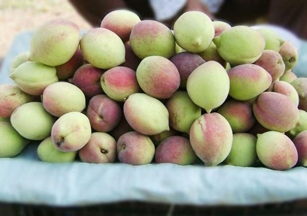 Những điều cần tránh khi ăn quả đào để không rước độc vào thân, 4 nhóm sau nên hạn chế - 1