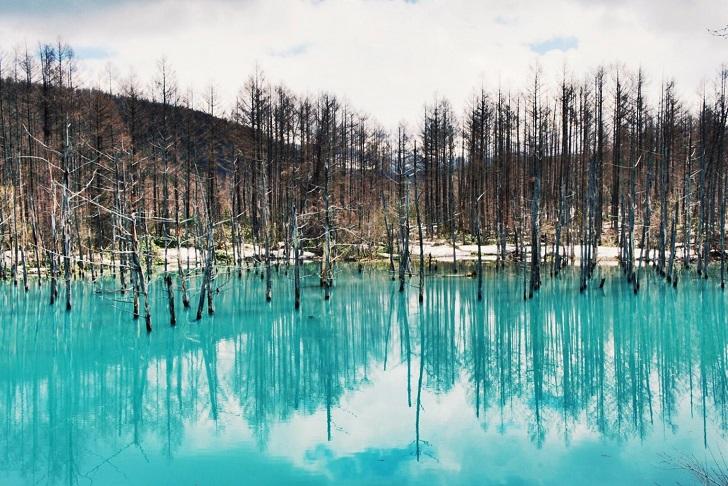 Ngỡ ngàng trước vẻ đẹp của hồ nước có màu xanh sapphire tại Nhật Bản - 3