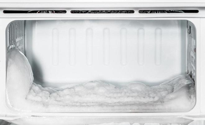 Cách bảo quản thực phẩm hiệu quả và tiết kiệm điện cho tủ lạnh - 5