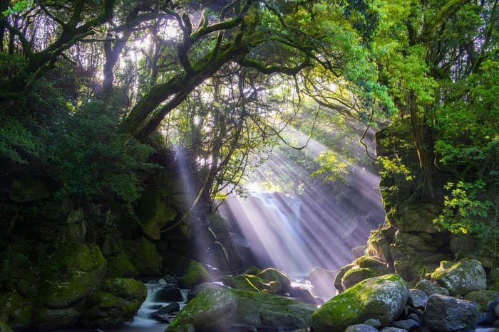 """Cảnh sắc đẹp nên thơ của ngôi làng được ca ngợi """"đẹp nhất Nhật Bản"""" - 3"""