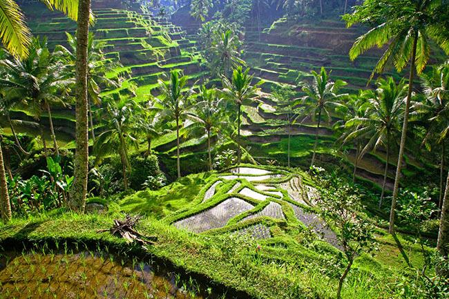 Hay den chau a du lich ngay khi co the de kham pha nhung dieu nay 14 1630407752 870 width650height433 10 địa điểm du lịch độc đáo nhất thế giới, mê mẩn ngay từ cái nhìn đầu tiên
