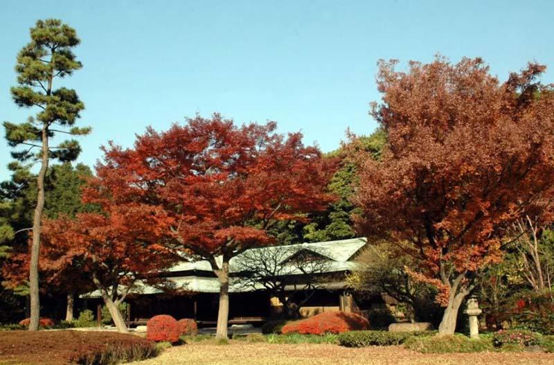 10 điều có thể bạn chưa biết về Hoàng cung Tokyo - 9