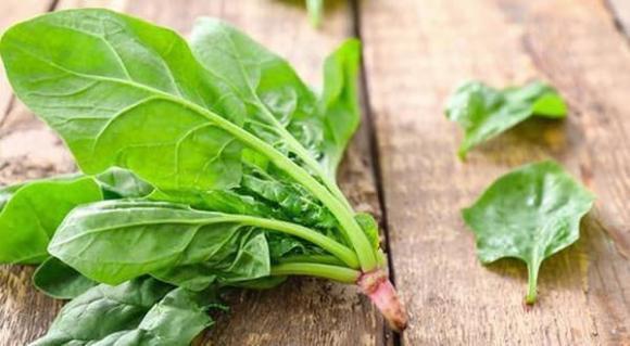 Không muốn ngộ độc thì dừng ngay việc ăn sống các loại rau này - 4