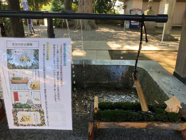 japanese shrine bees water drink honey hitokotonushi ibaraki cute sweet kind heartwarming japan story news photos 4 1631268096 662 width640height480 10 địa điểm du lịch độc đáo nhất thế giới, mê mẩn ngay từ cái nhìn đầu tiên