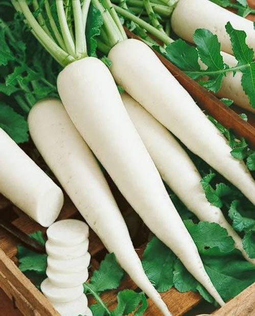 """Củ cải trắng cực tốt nhưng có thể hóa """"chất độc"""" khi kết hợp với những thứ này - 3"""