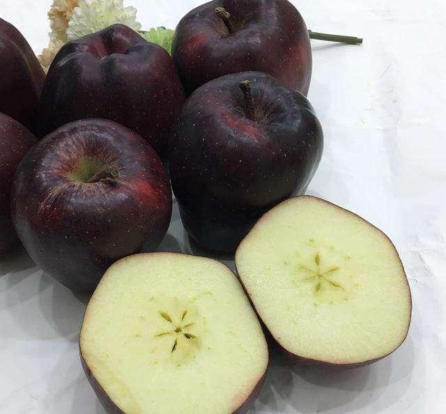 Quả táo đen giòn ngọt gấp nhiều lần so với táo thông thường, bạn đã thử chưa? - 5