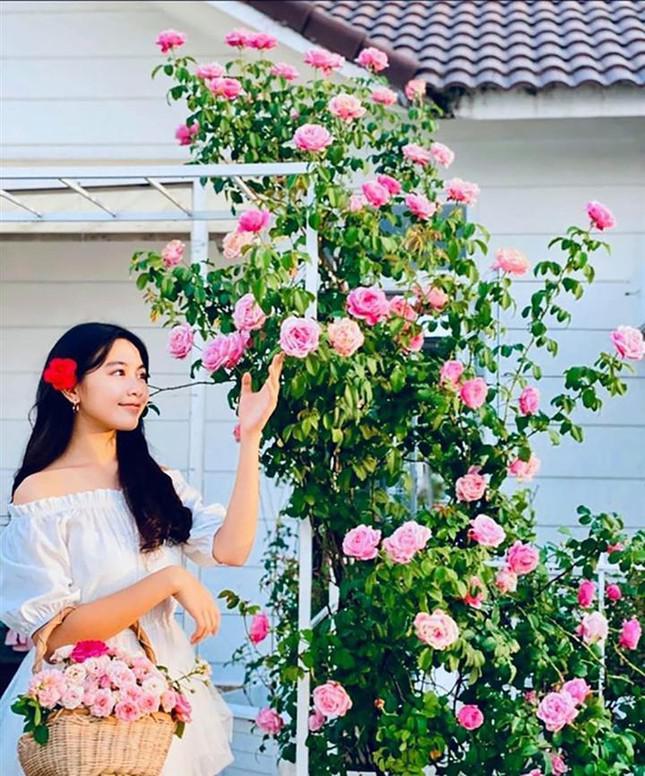 Con gái 15 tuổi nhà Quyền Linh khuấy đảo mạng xã hội với bộ ảnh xinh như thiên thần - 7