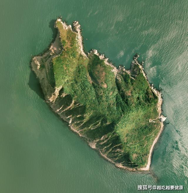 Rợn người với hòn đảo có gần 20,000 con rắn độc trong 1km2 - 2