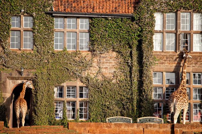 23 khách sạn đẹp mê hồn khiến bạn muốn đến ngay lập tức - hình ảnh 22