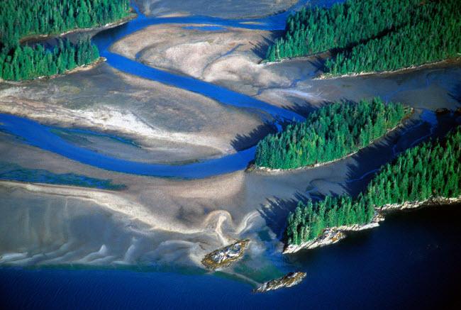 19 bức ảnh minh chứng Alaska là nơi đẹp nhất Trái đất - hình ảnh 16