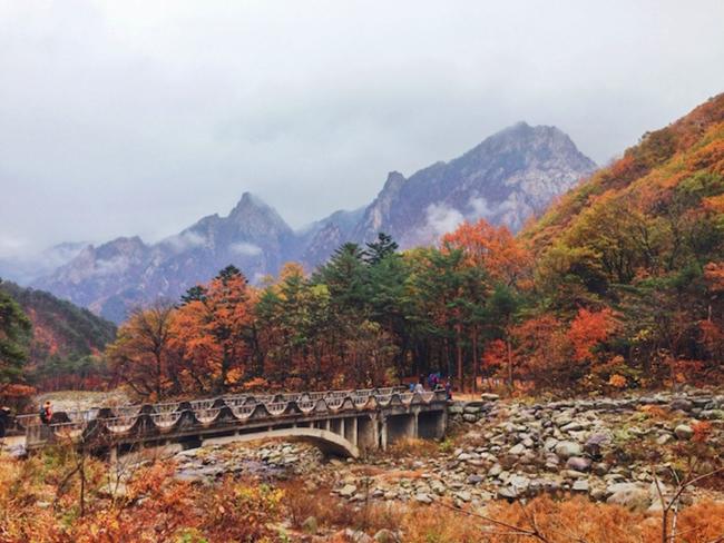Thu về khắp ngõ ngách Hàn Quốc rồi, xách vali lên và đi thôi! - hình ảnh 5