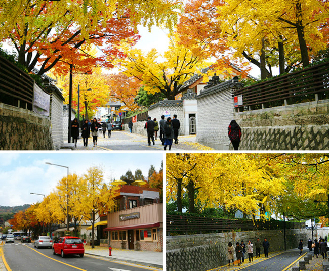 Thu về khắp ngõ ngách Hàn Quốc rồi, xách vali lên và đi thôi! - hình ảnh 9