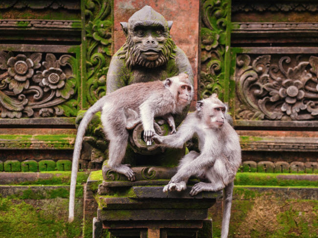 50 hành trình không nên bỏ qua ở châu Á (P1) - hình ảnh 8