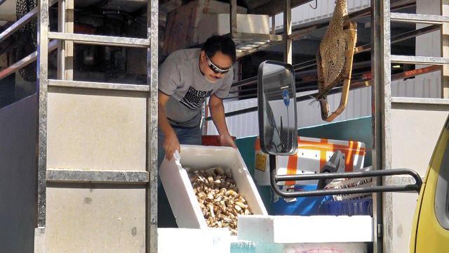 Diễn viên chuyên trị vai cường hào ác bá tại TVB nay làm nghề bán cá - hình ảnh 5