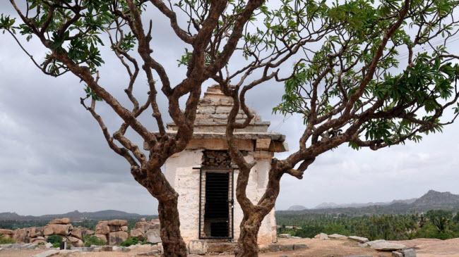 Bí ẩn bên trong thành phố của vua và các vị thần ở Ấn Độ - hình ảnh 16