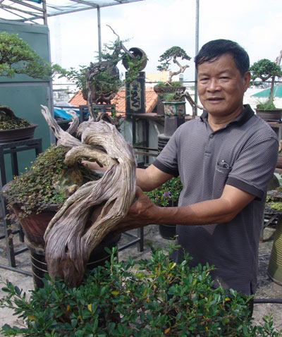 """Cận cảnh: Lão nông Sài Gòn phù phép gốc """"củi"""" thành cây cảnh nửa tỷ - hình ảnh 3"""